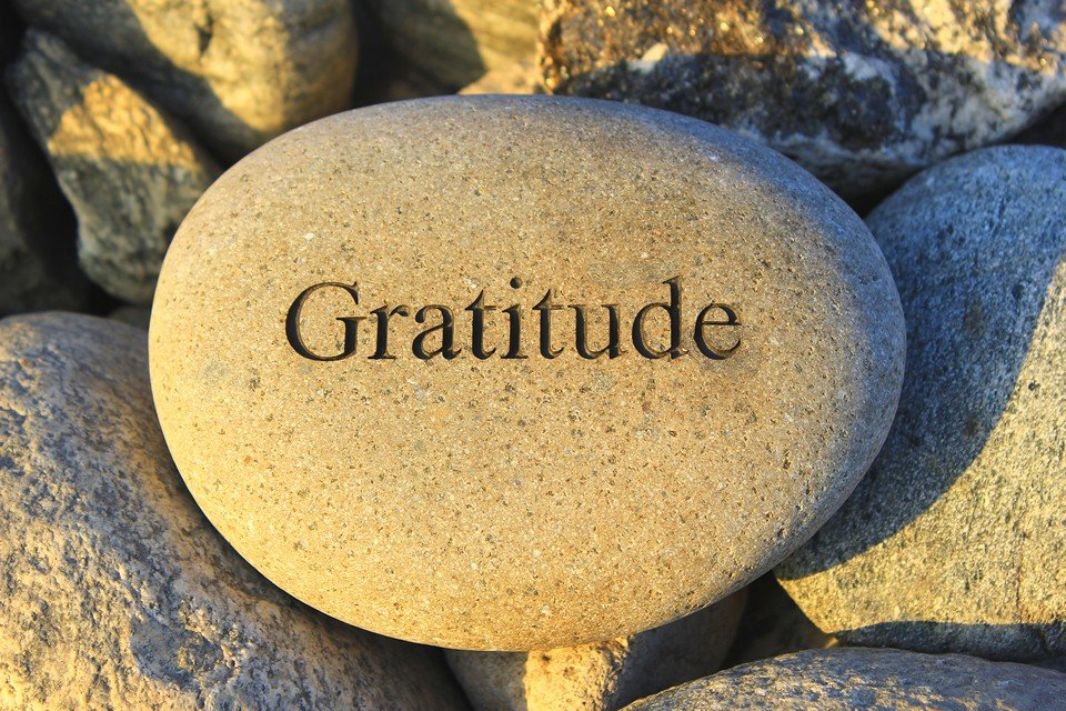 Gratitude – And Taking Stock -100th Blog Post