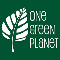 One Green Planet