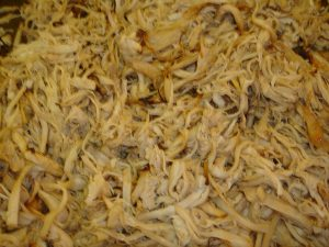 Shredded King Oyster Mushrooms after Roasting