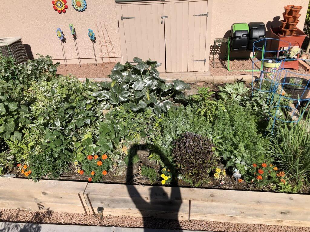 The Garden is Growing